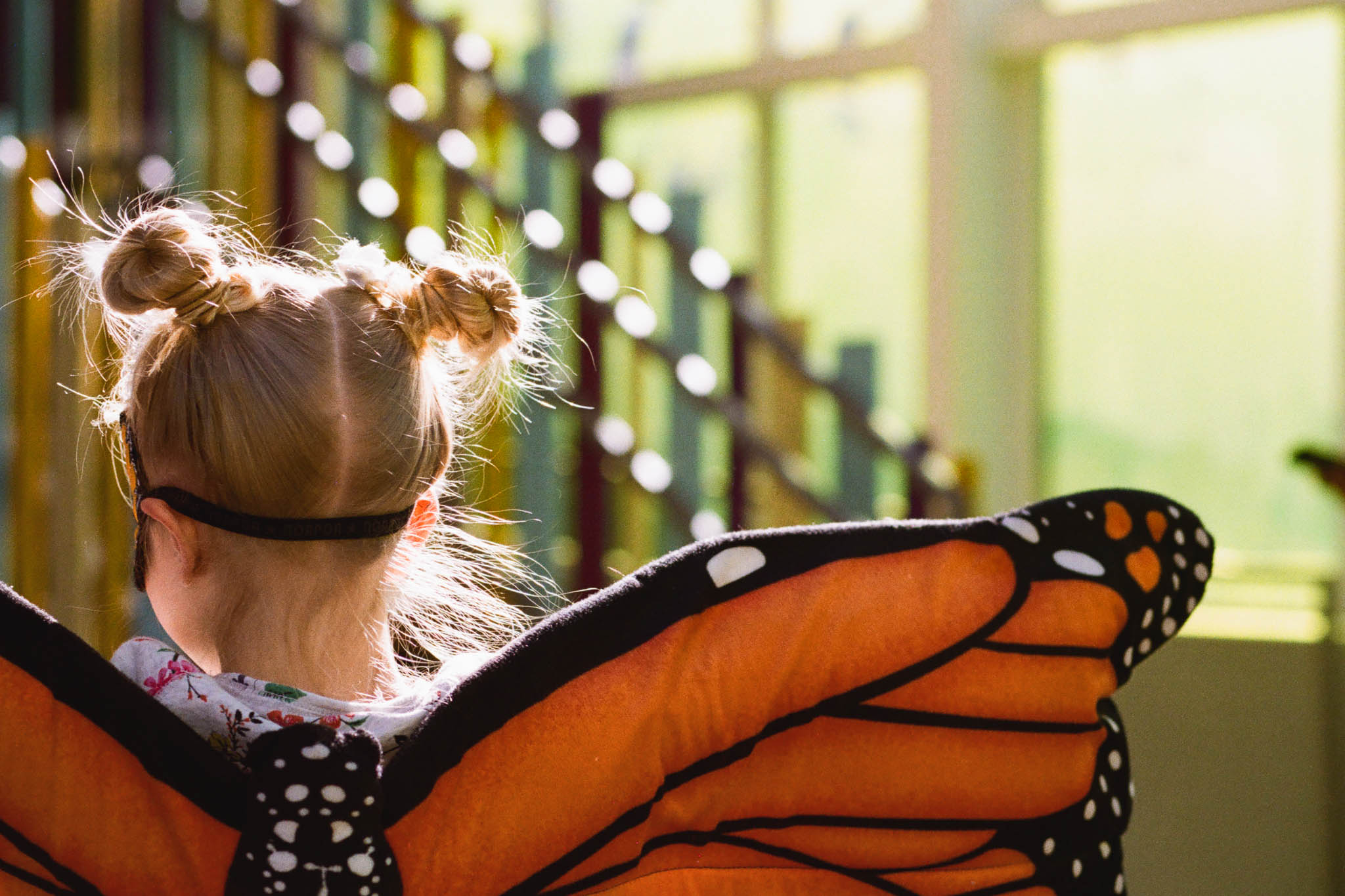 Butterfly Blog Files-11.jpg