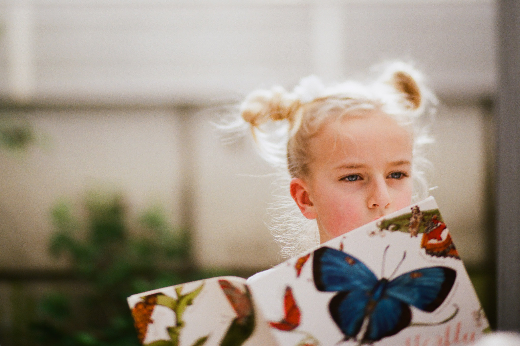 Butterfly Blog Files-8.jpg