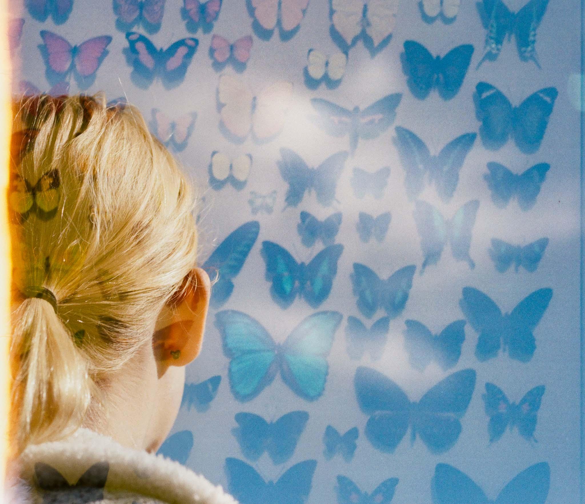 Butterfly Blog Files-2.jpg