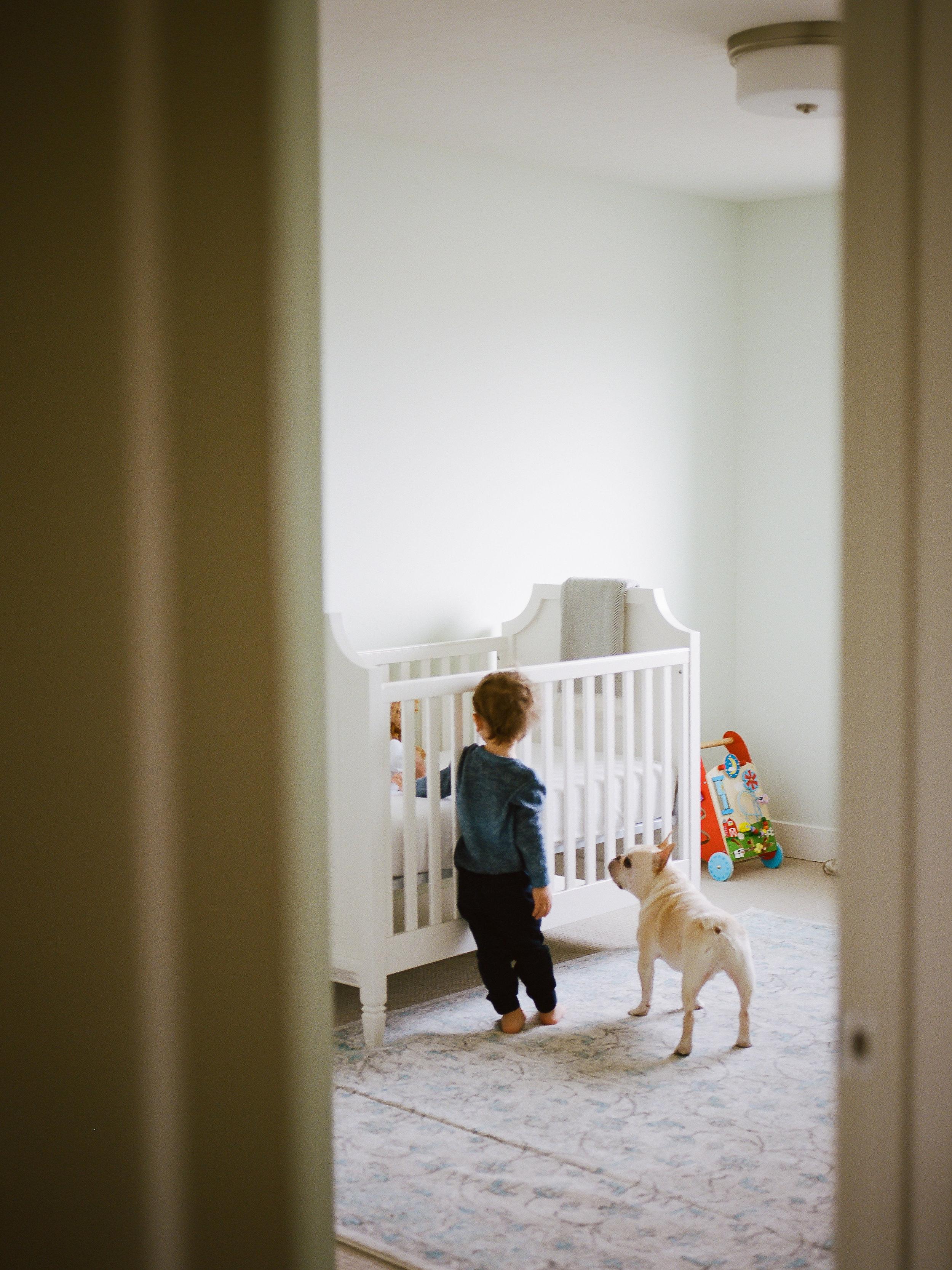 Website In Home Baby Wexler-15.jpg