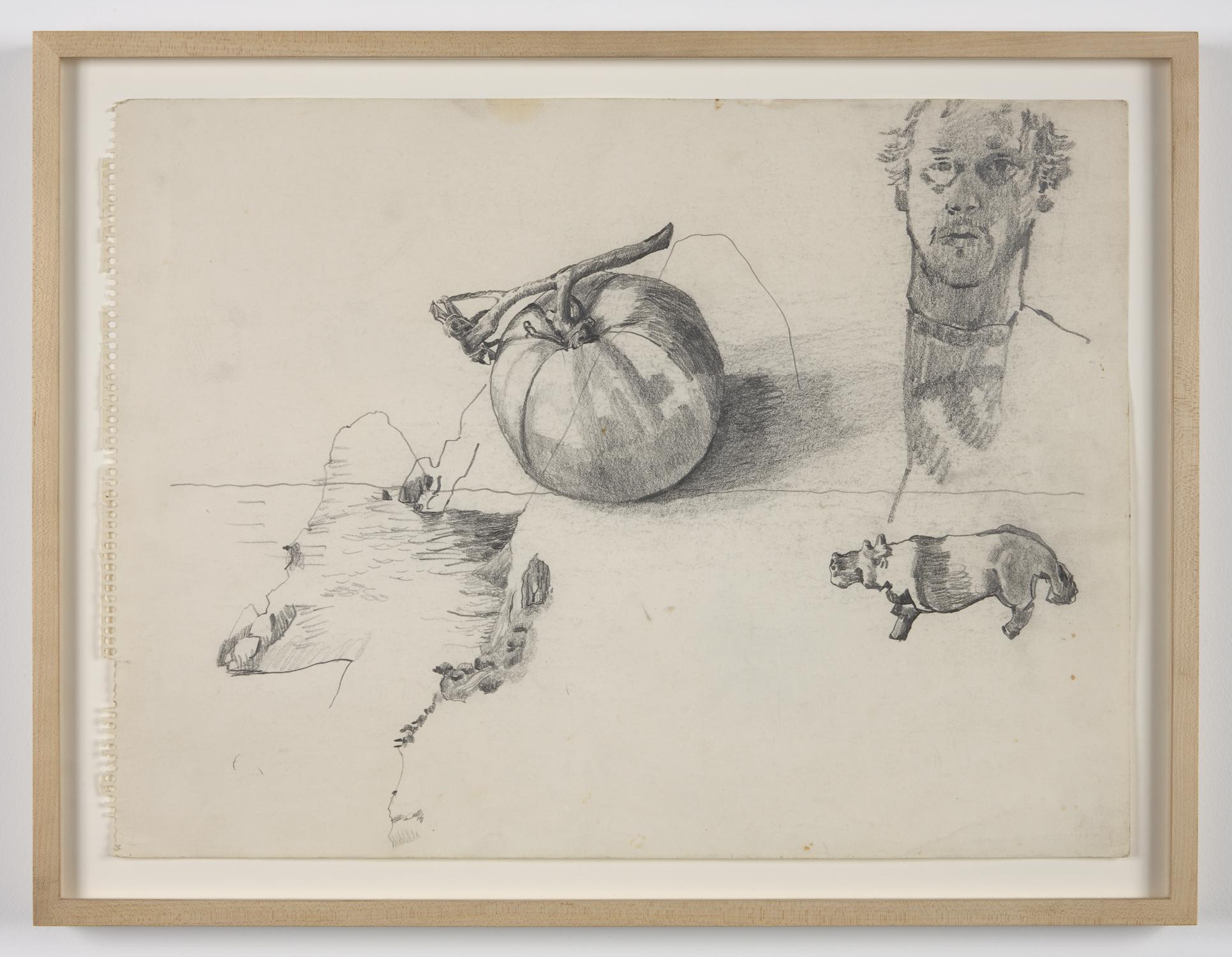 Untitled  (self-portrait, tomato, hippo) ca. 1970 pencil on paper 14 1/8 x 19 in/36 x 48.5 cm Photo: Joerg Lohse ©Estate of George Paul Thek, Courtesy Alexander and Bonin, New York