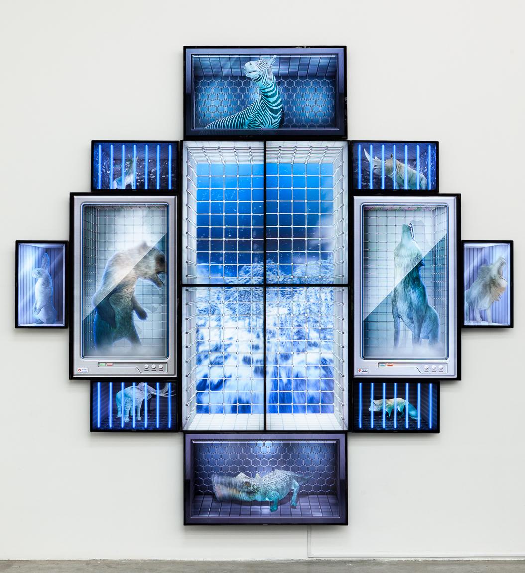 Image courtesy  Contemporary Art Daily