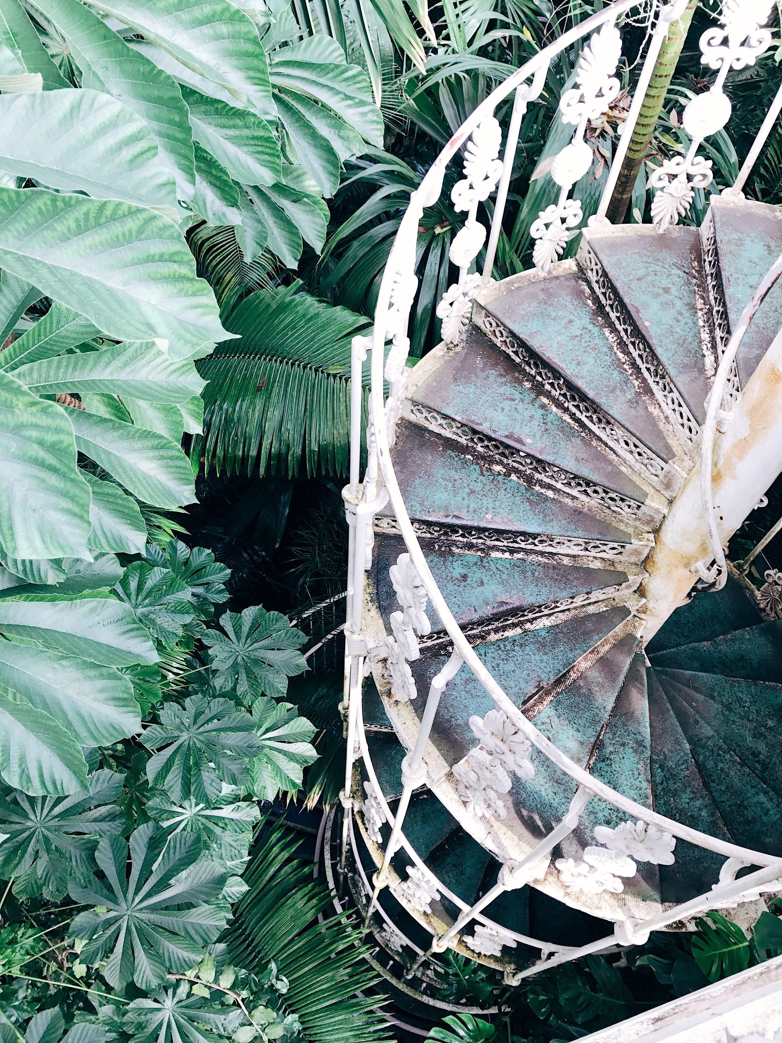 Image: Weekend in London - Kew Gardens