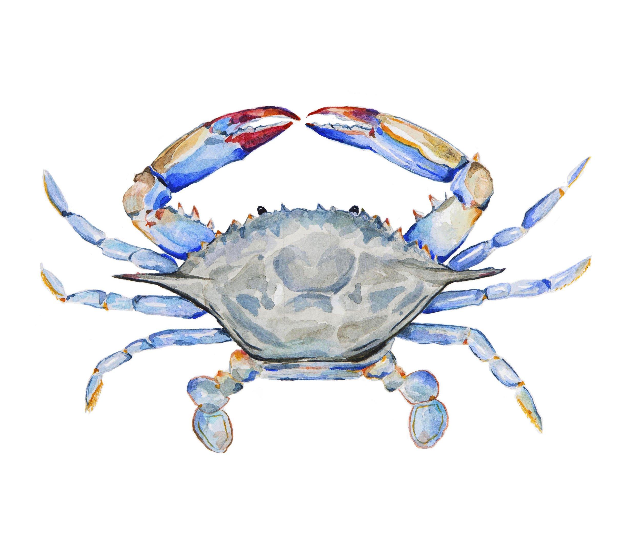 Crab Updated.jpg