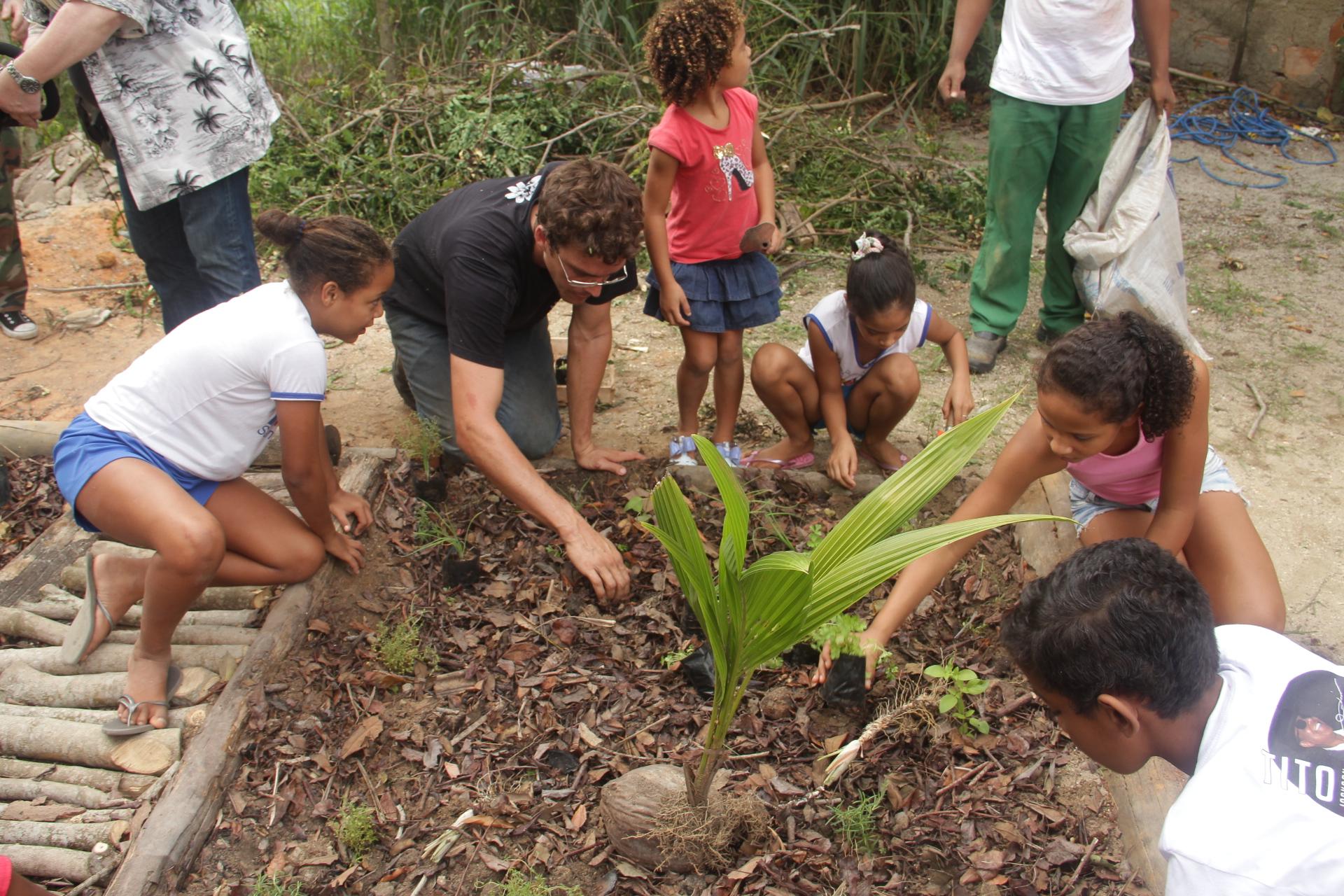 Plantio realizado em uma escola municipal em Cabrália - Bahia