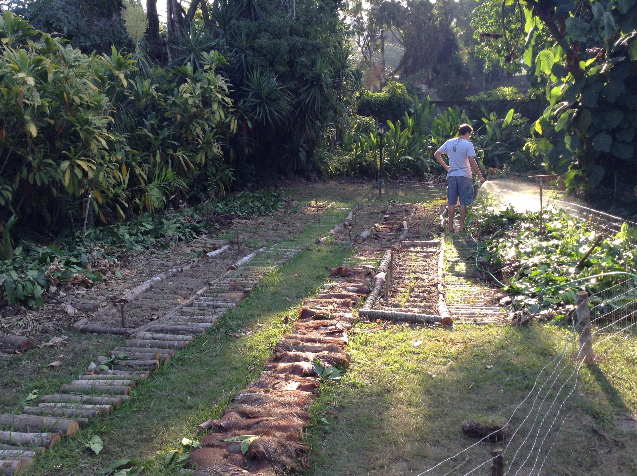 Preparando o terreno