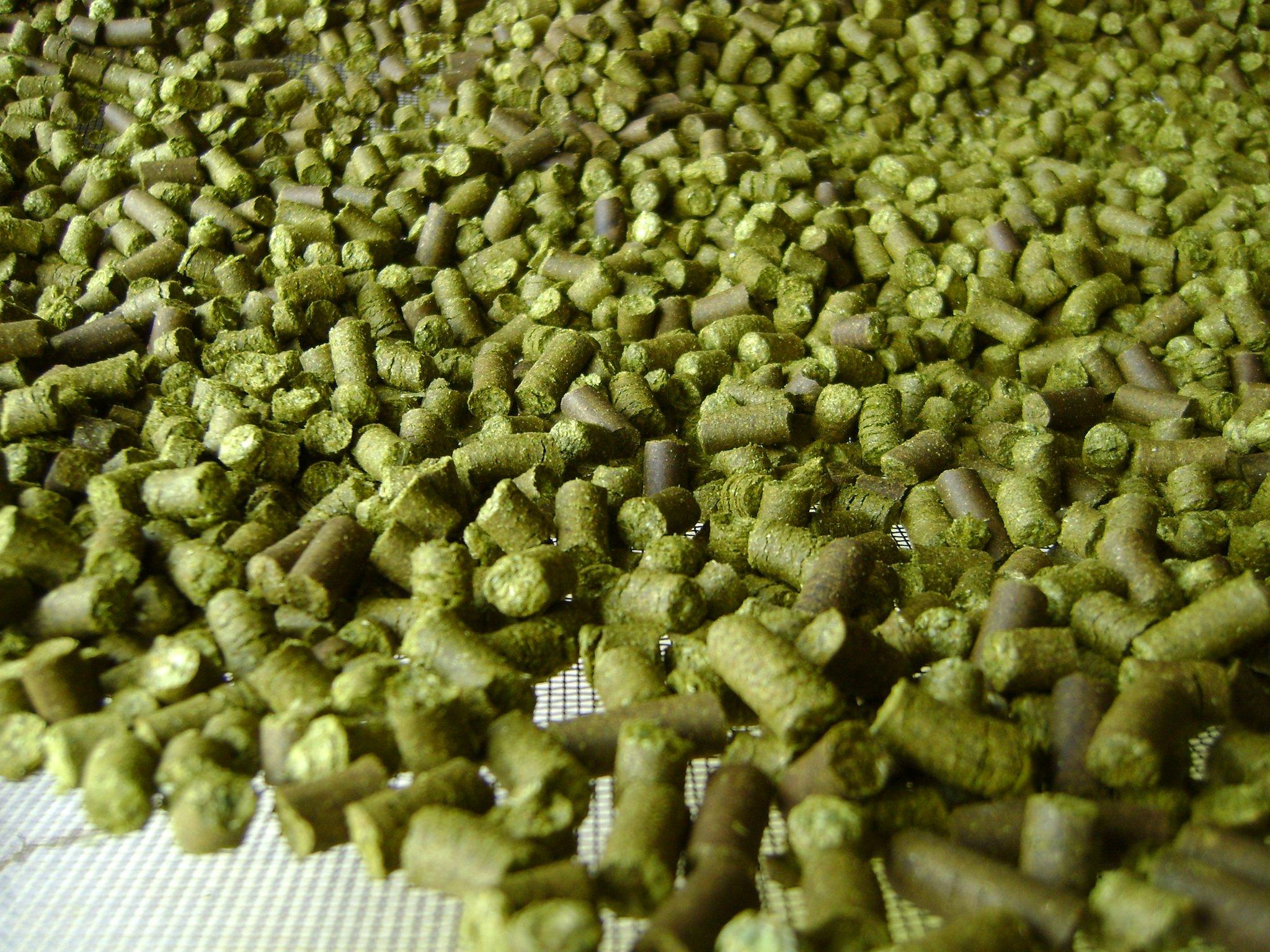 hop-pellets.jpg