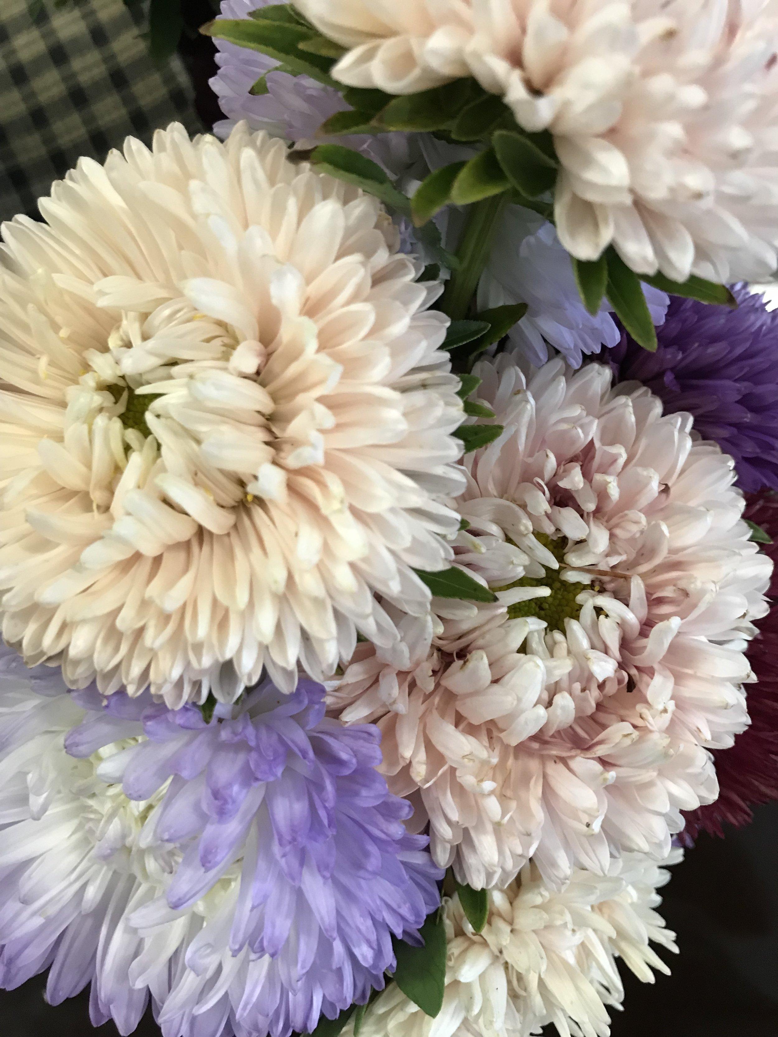 Fresh Flowers.jpg