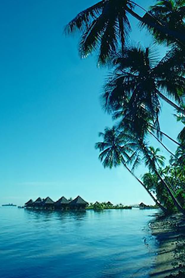 Kimball-Hall-Tahiti.jpg