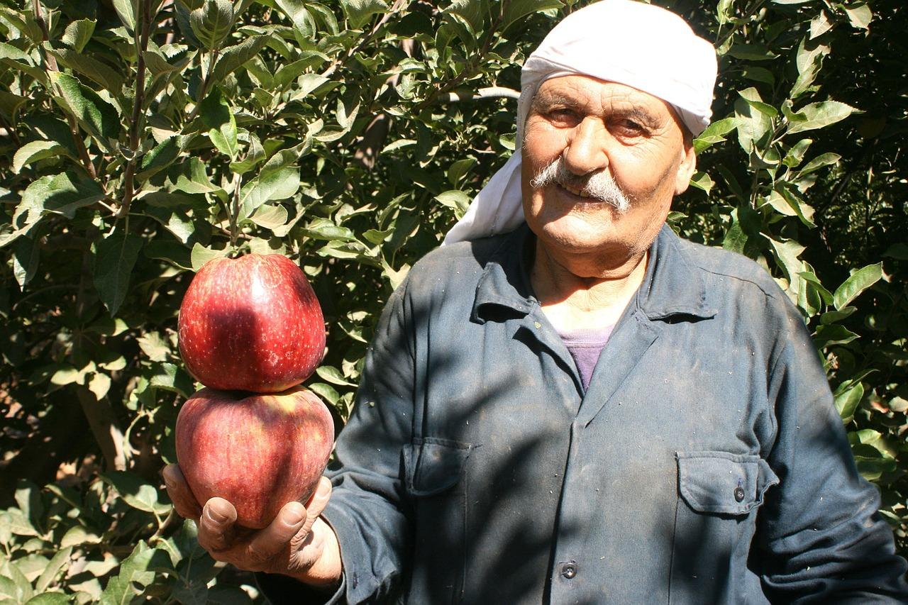 apple-674764_1280.jpg