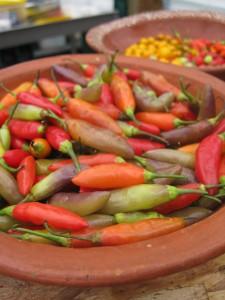 ms.peppers-225x300.jpg