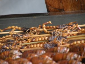 Scorpions-other-insects-impaled-on-bamboo-sticks-being-fried-300x225.jpg