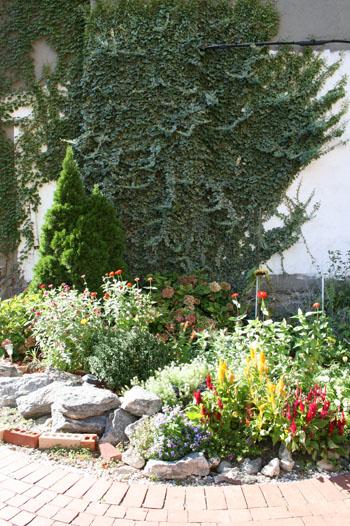 garden5.jpg