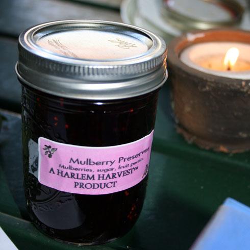 mulberry-preserves.jpg