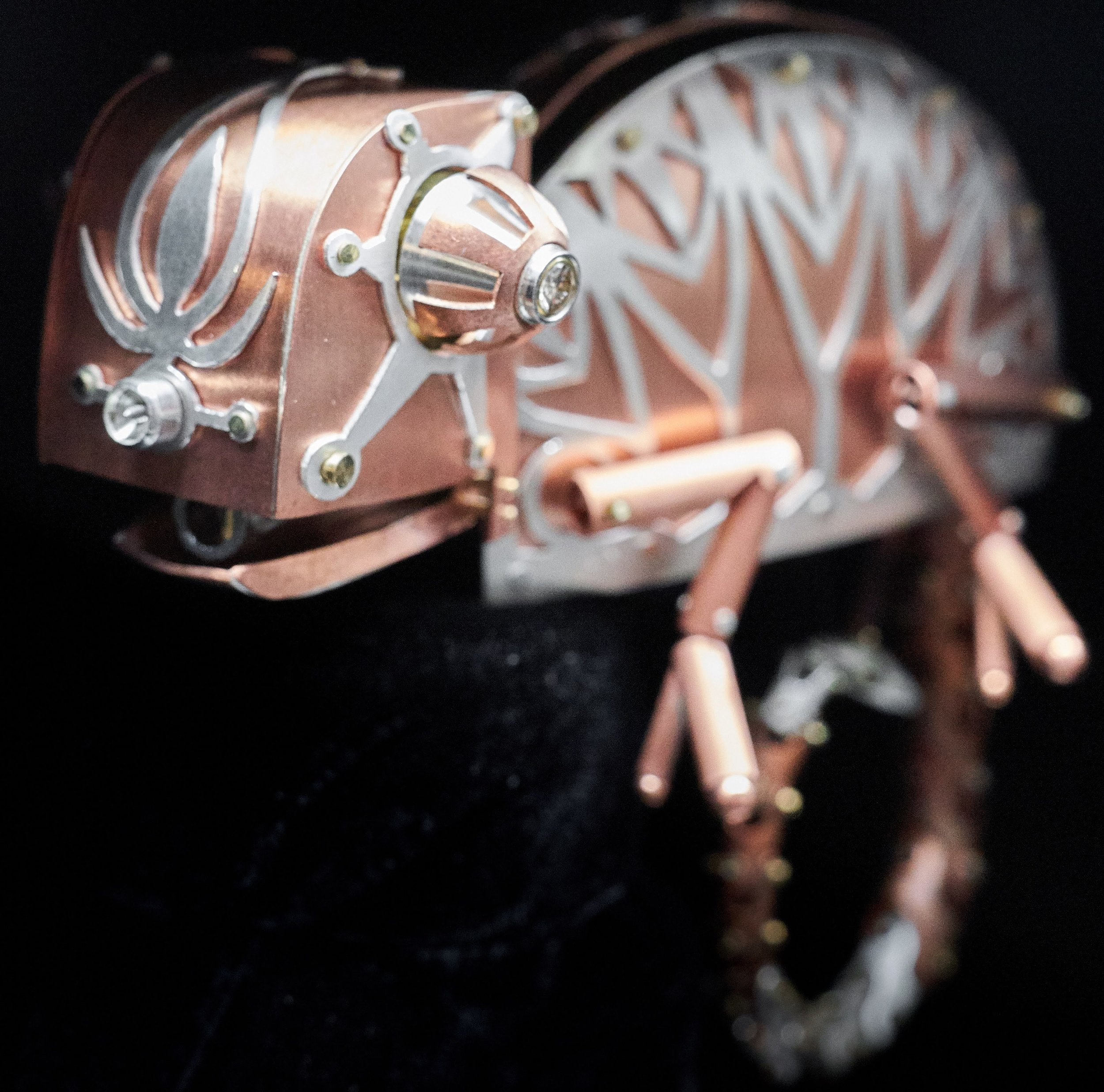 Chameleon Automaton
