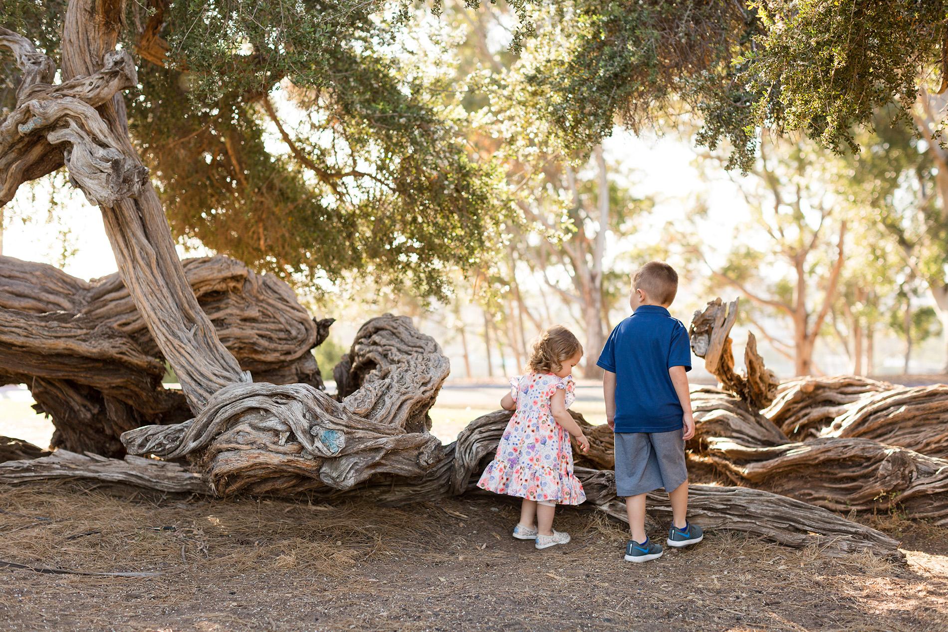 So.Cal.Family.Photographer.Christine.Dammann.PhotographyWF