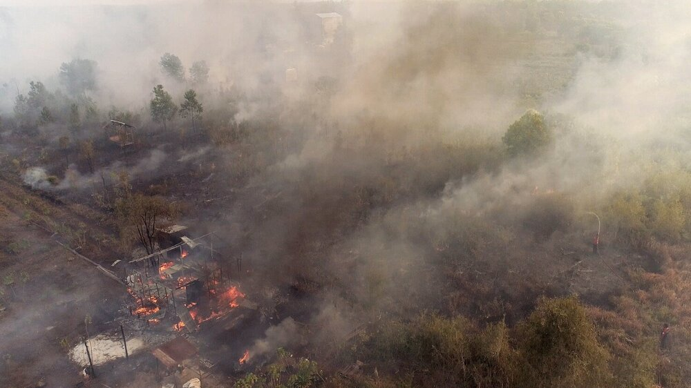 Farmers' wooden building also caught on fire along with the trees, resulting in thick smoke haze |  RANU WELUM MEDIA