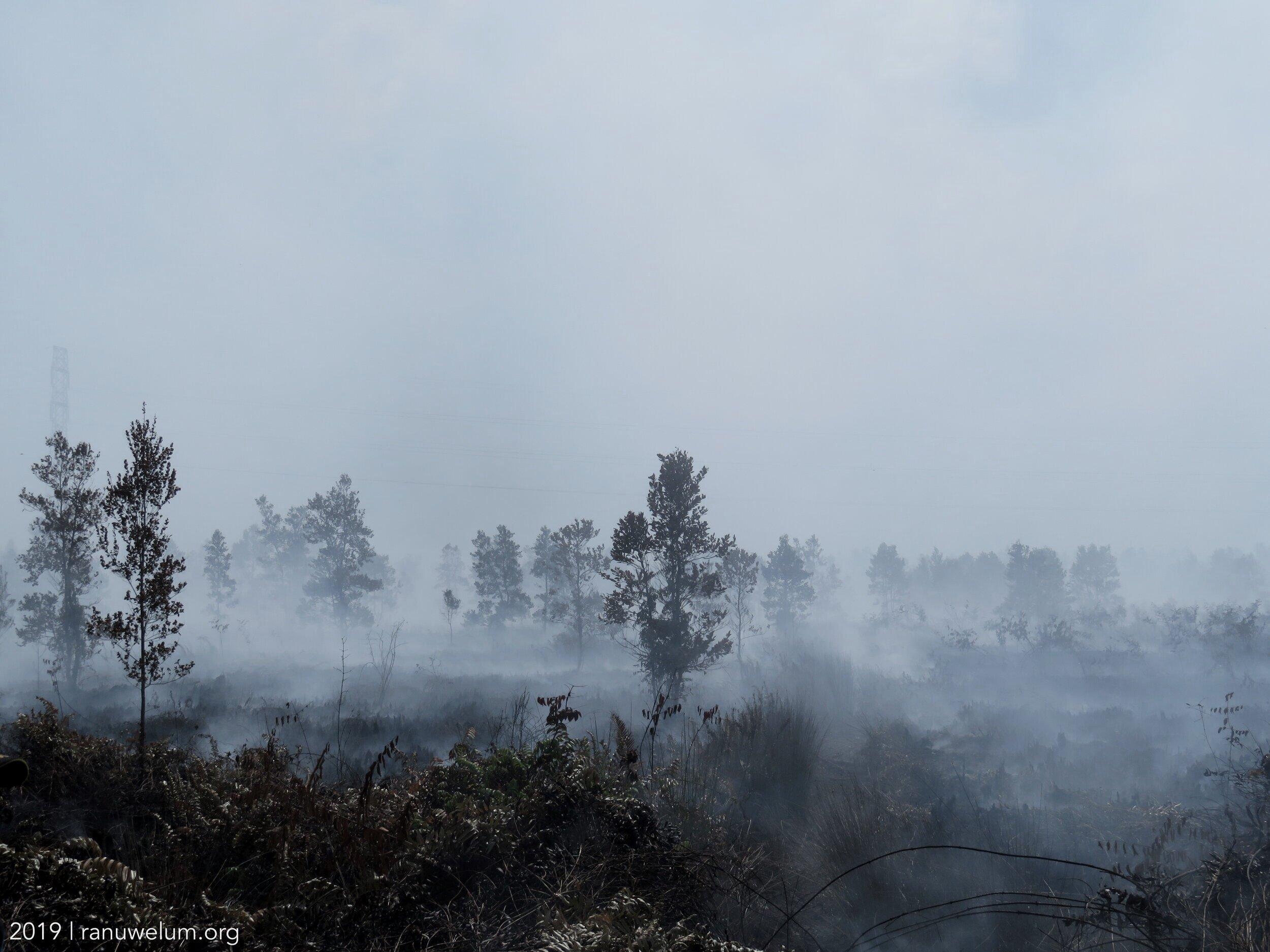 Deep peatland fires resulting in thick smoke haze in Palangkaraya.