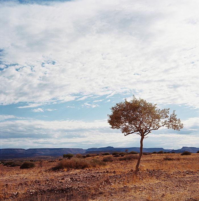 Namibia_Medium Format_06.jpg