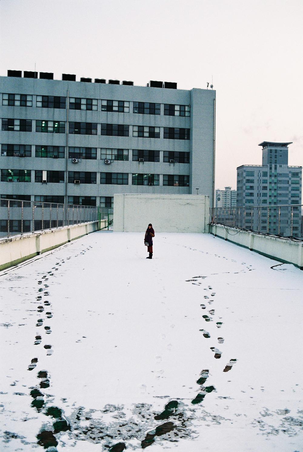 Nina Ahn 2.jpg