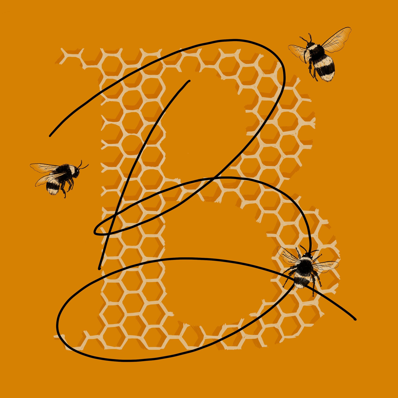 beki-Bee