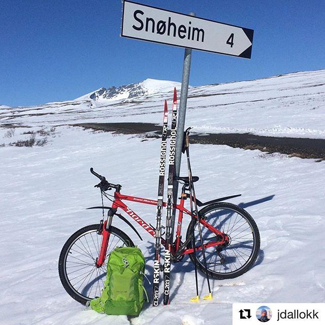 Dagens blinkskudd. 😊 #Repost @jdallokk ・・・ Strålende tur i #snøhetta området. Sol, skyfritt og vindstille. Sykkel til #striåa og felleski derfra. #dovrefjell #nasjonalparkriket #godmorgennorge #vinterogvår