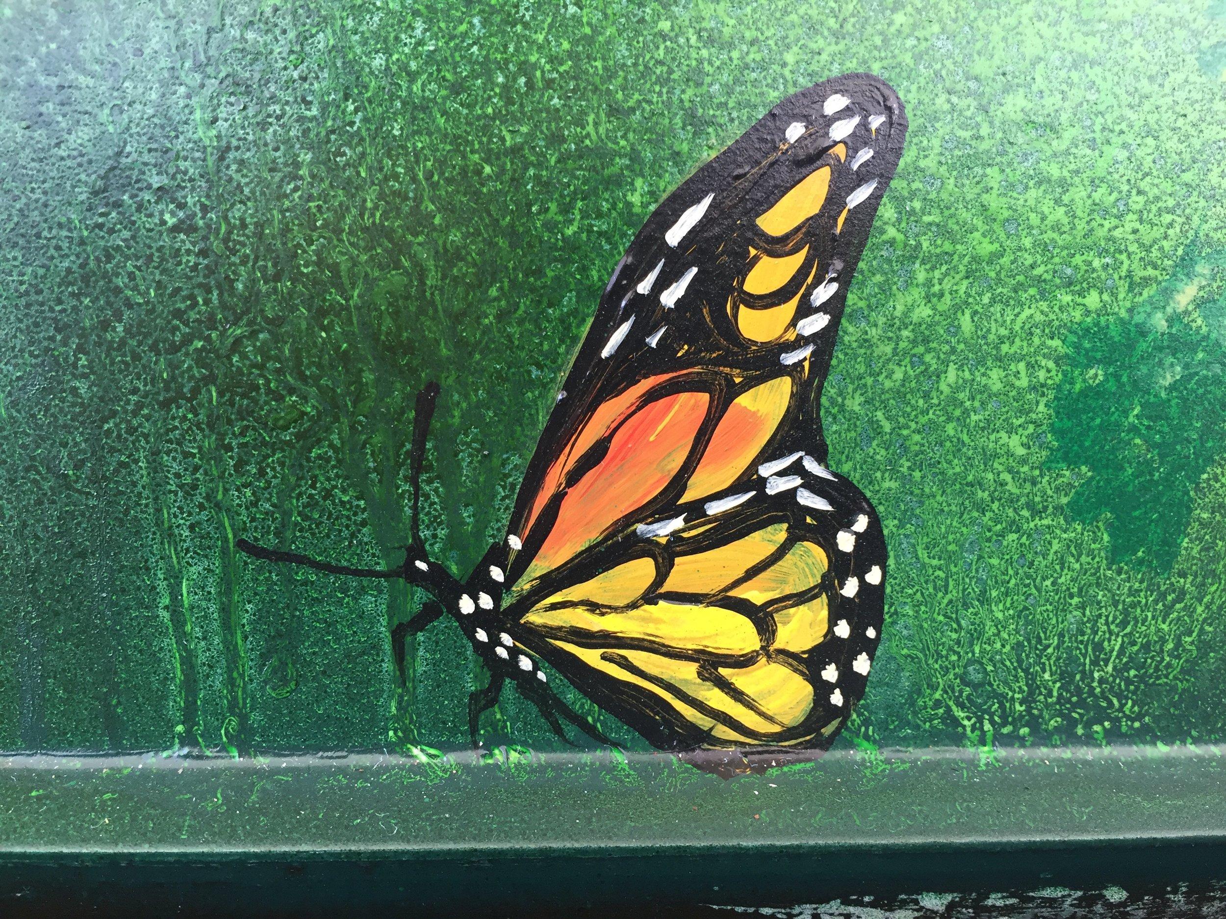 Bennett SS Butterfly Side Single.jpg