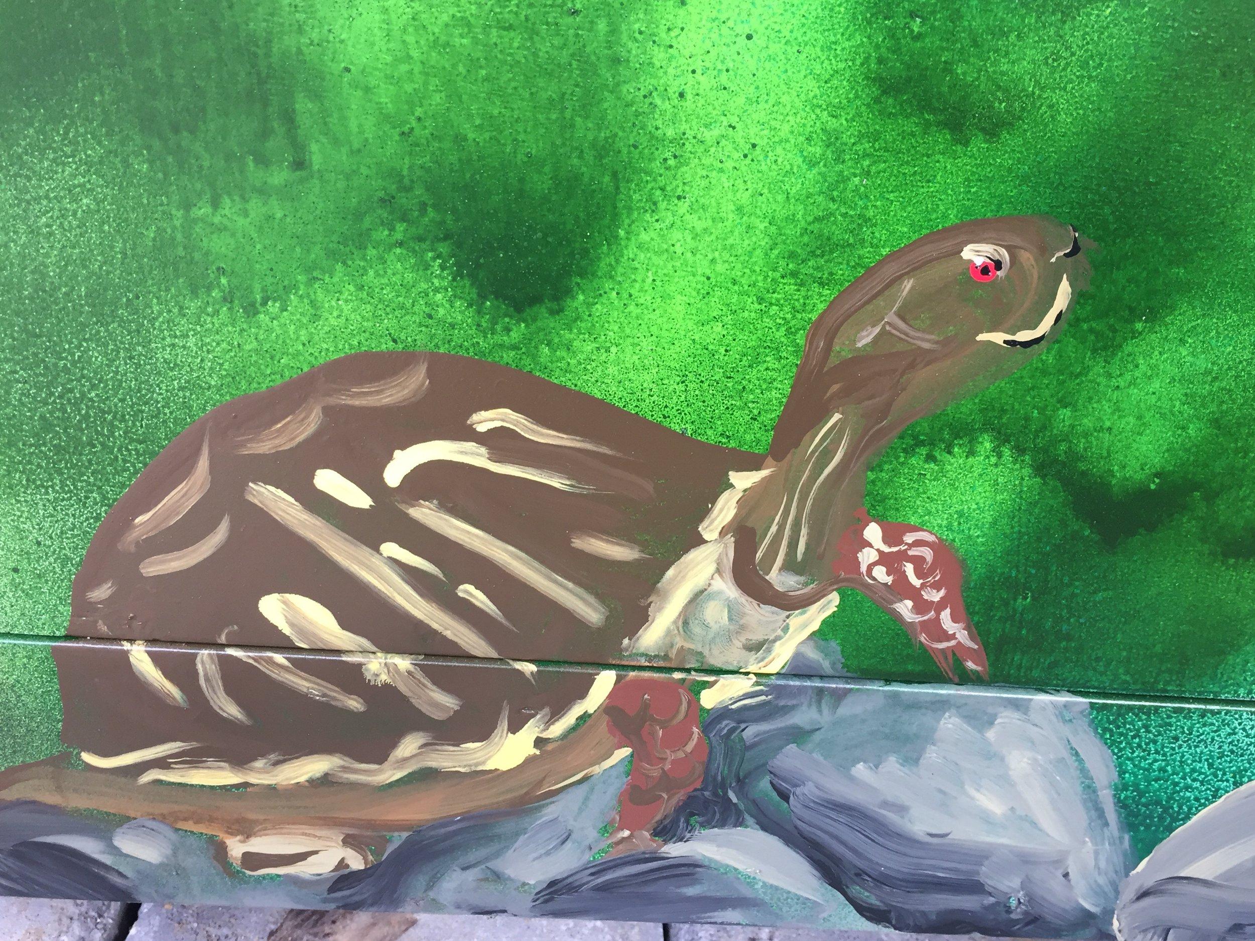 Bennett SS Turtle.jpg