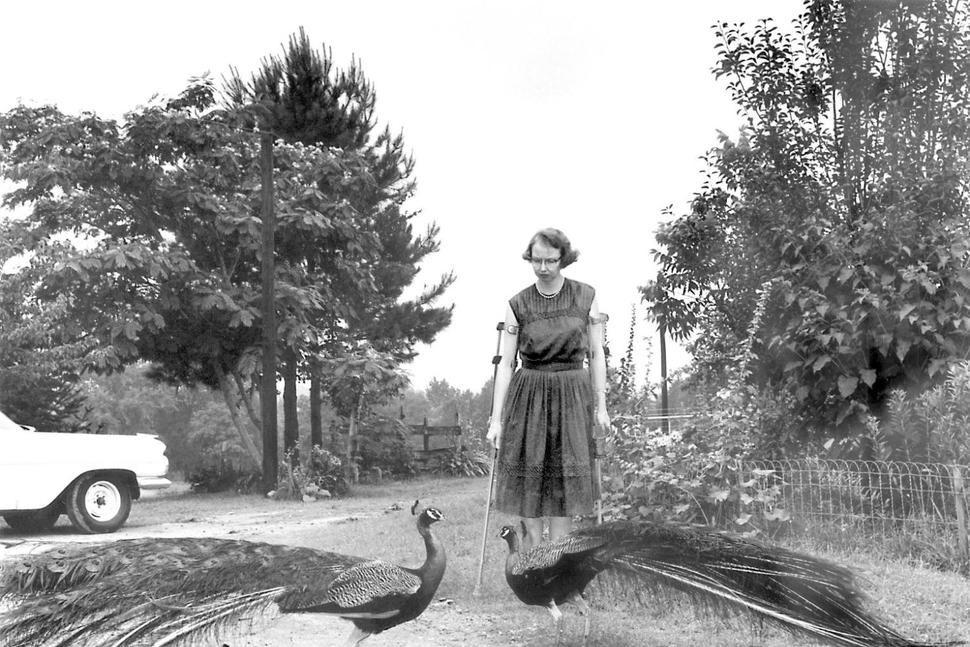 "This 1962 photo shows author Flannery O'Connor in the driveway at Andalusia in Georgia. . The final home of O'Connor is being given to Georgia College after a small foundation struggled to keep up the historic property. The Savannah-born author spent the last 13 years of her life on the middle Georgia dairy farm known as Andalusia. O'Connor completed her best-known works there, including the short story collection ""A Good Man Is Hard To Find.""  (Joe McTyre /Atlanta Journal-Constitution via AP) The Associated Press"