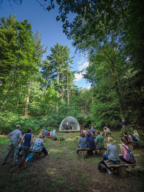 085+Sound+Tracks+Forest+Walks+-+photo+by+Ash+Mills.jpg
