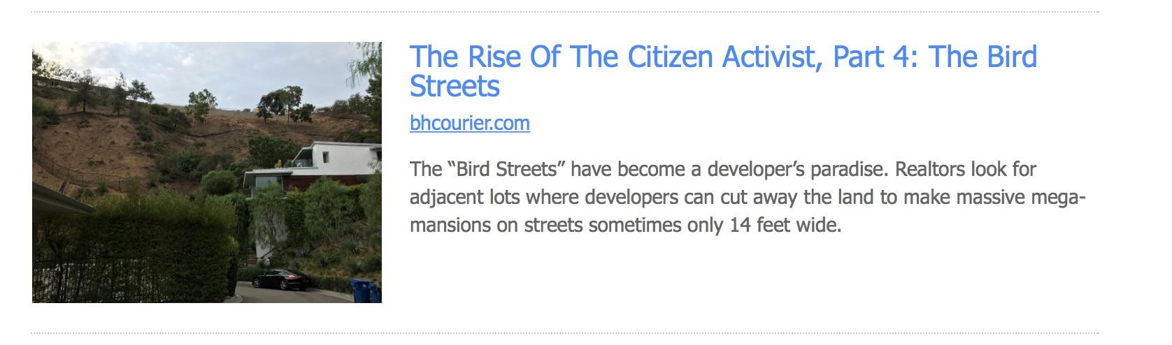 Bird Streets.jpg