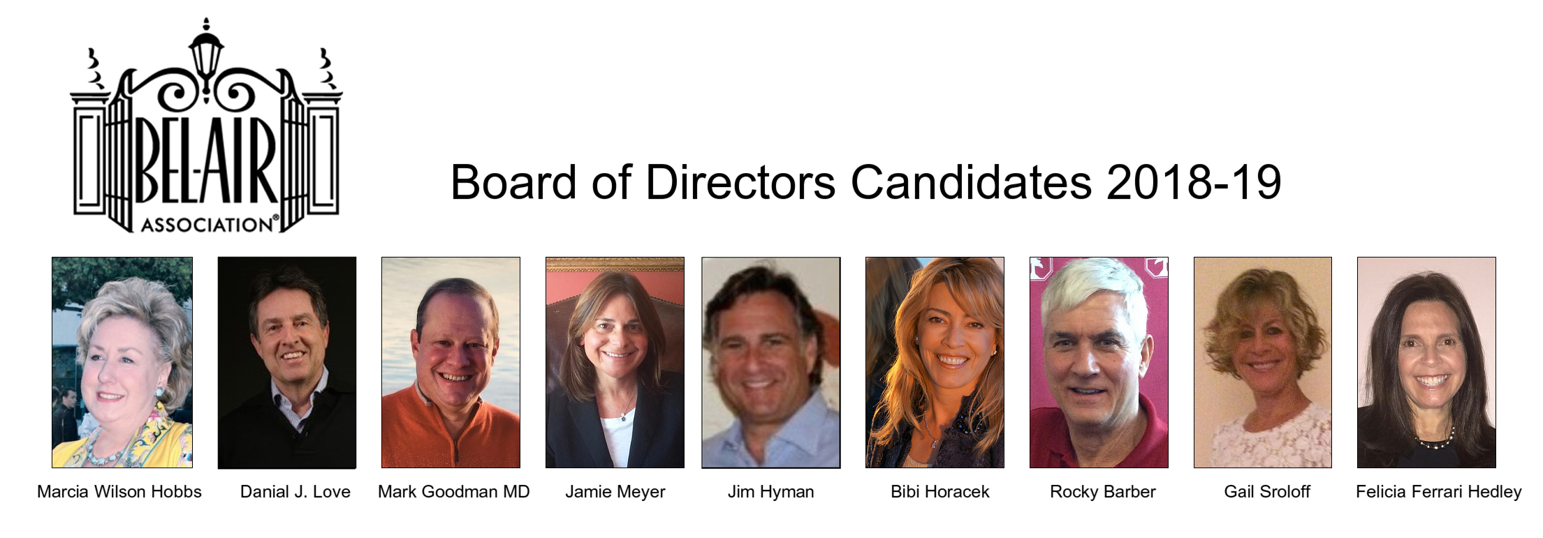 BAA BOD Candidates.jpg