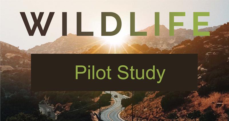 Wildlife Pilot Study 800.jpg
