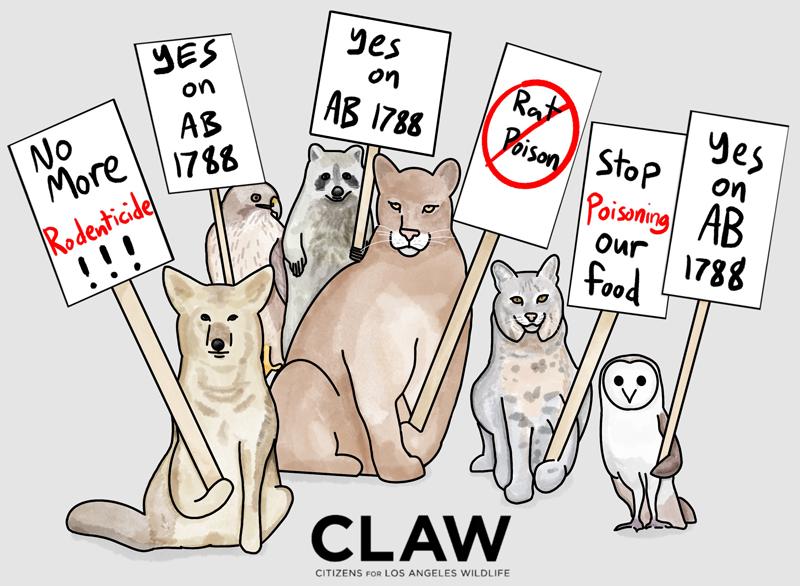 CLAW Rodenticide artwork AB 1788 800 copy.jpg