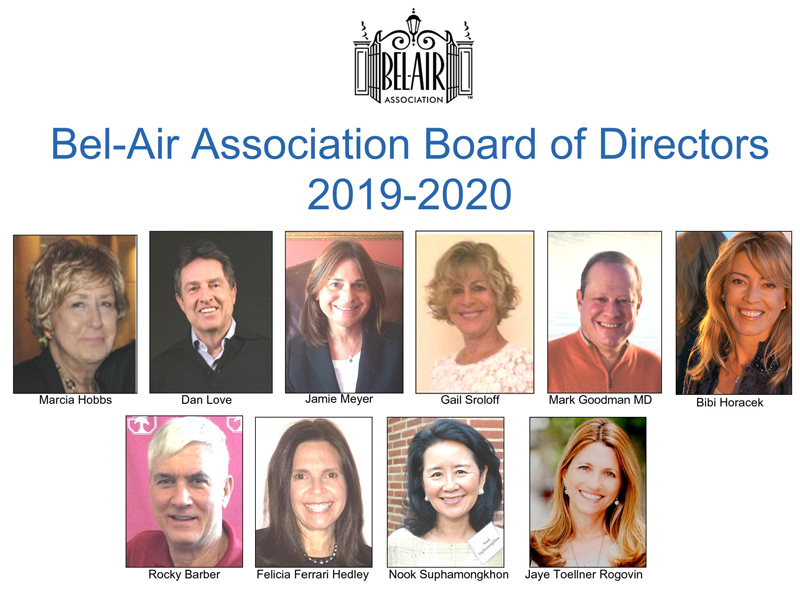 BAA BOD 2019-20 800.jpg