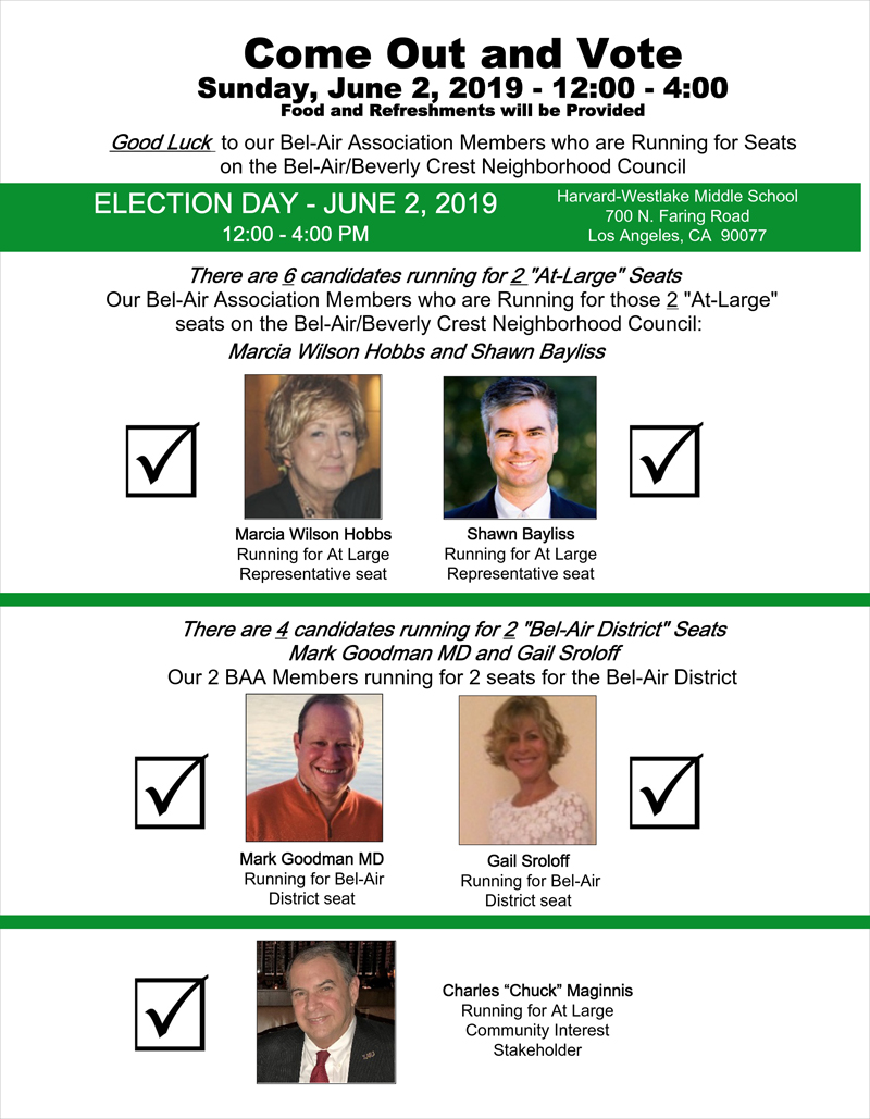 BABCNC Election Poster for BAA Members.jpg