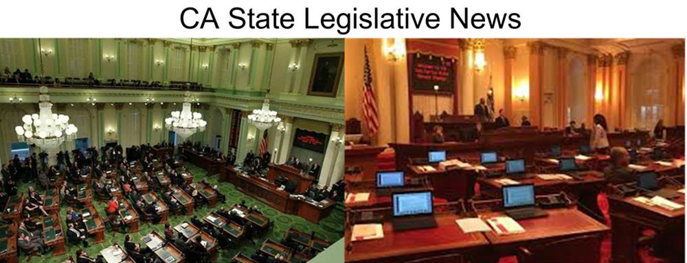 CA State Legislative News 1-1000 copy.jpg