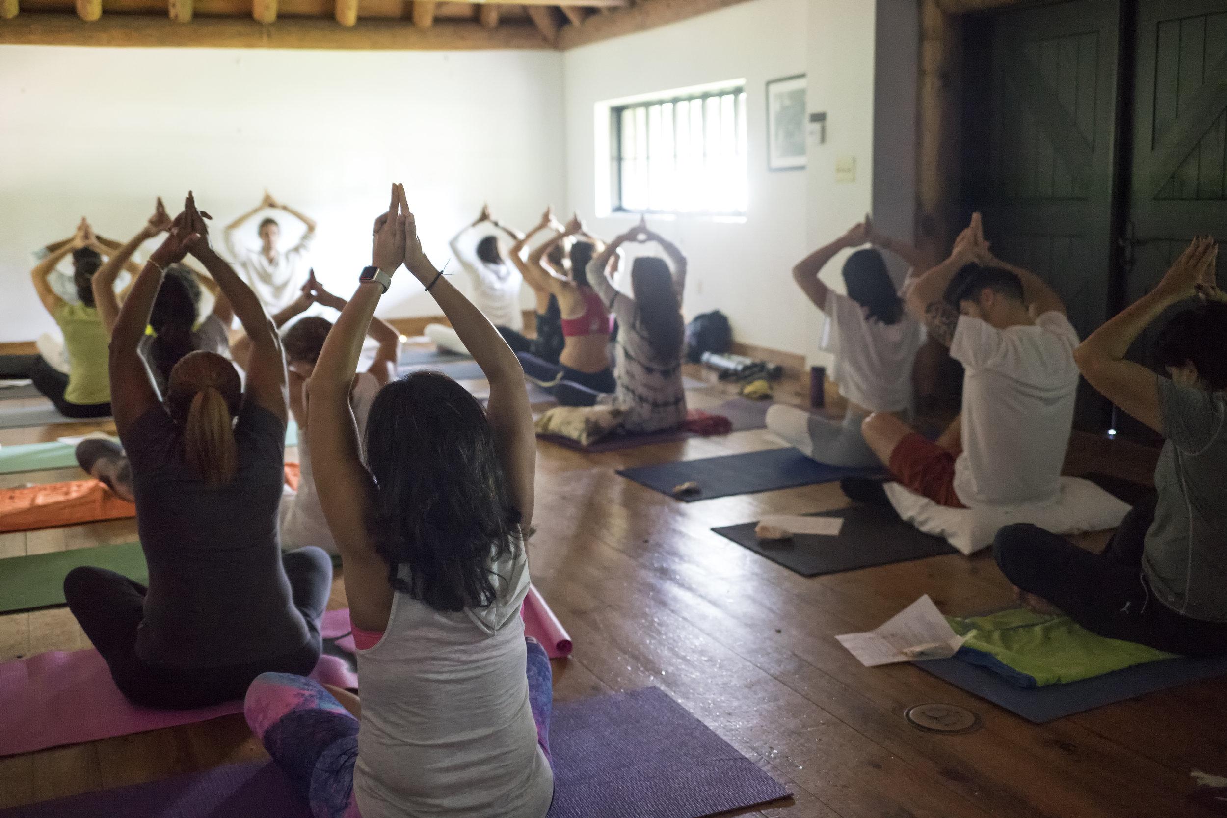 Yoga35.jpg