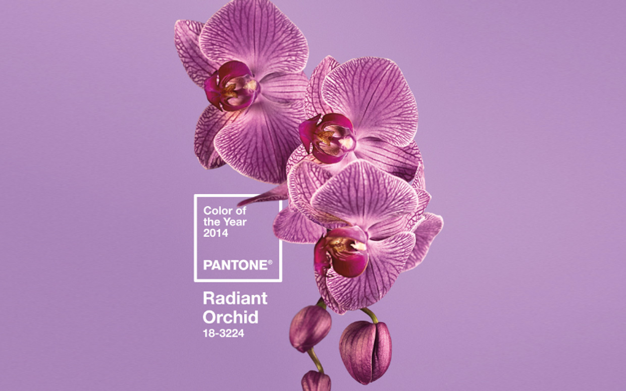 2014 is gonna be a pretty amazing year … at least according to Pantone. Our color gods have picked the color of the year. Some people are hating it. I'm not. It's amazing!    Don't tell any of my clients, but I plan to use this in at least one book in 2014!