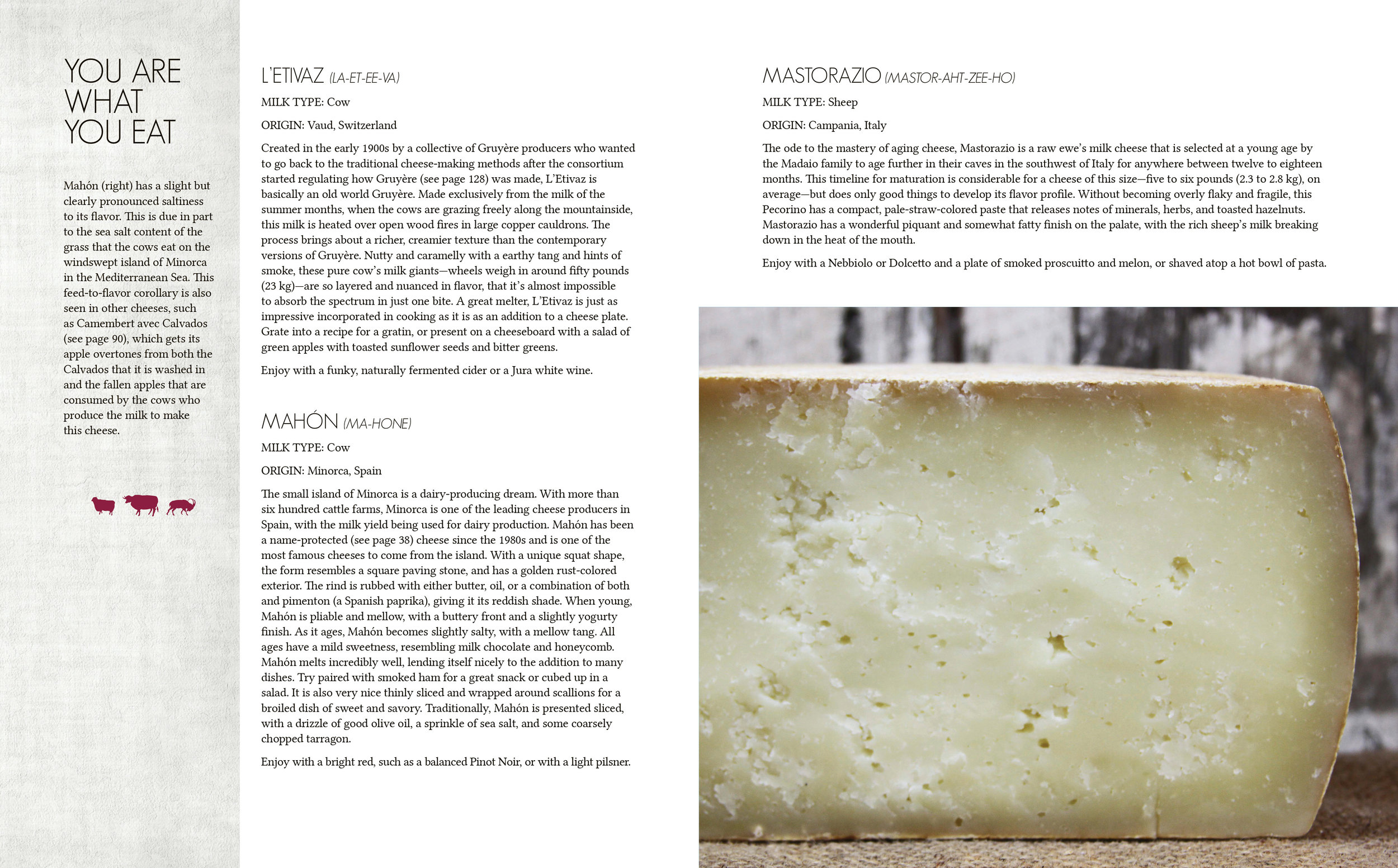 Cheese Pages67.jpg