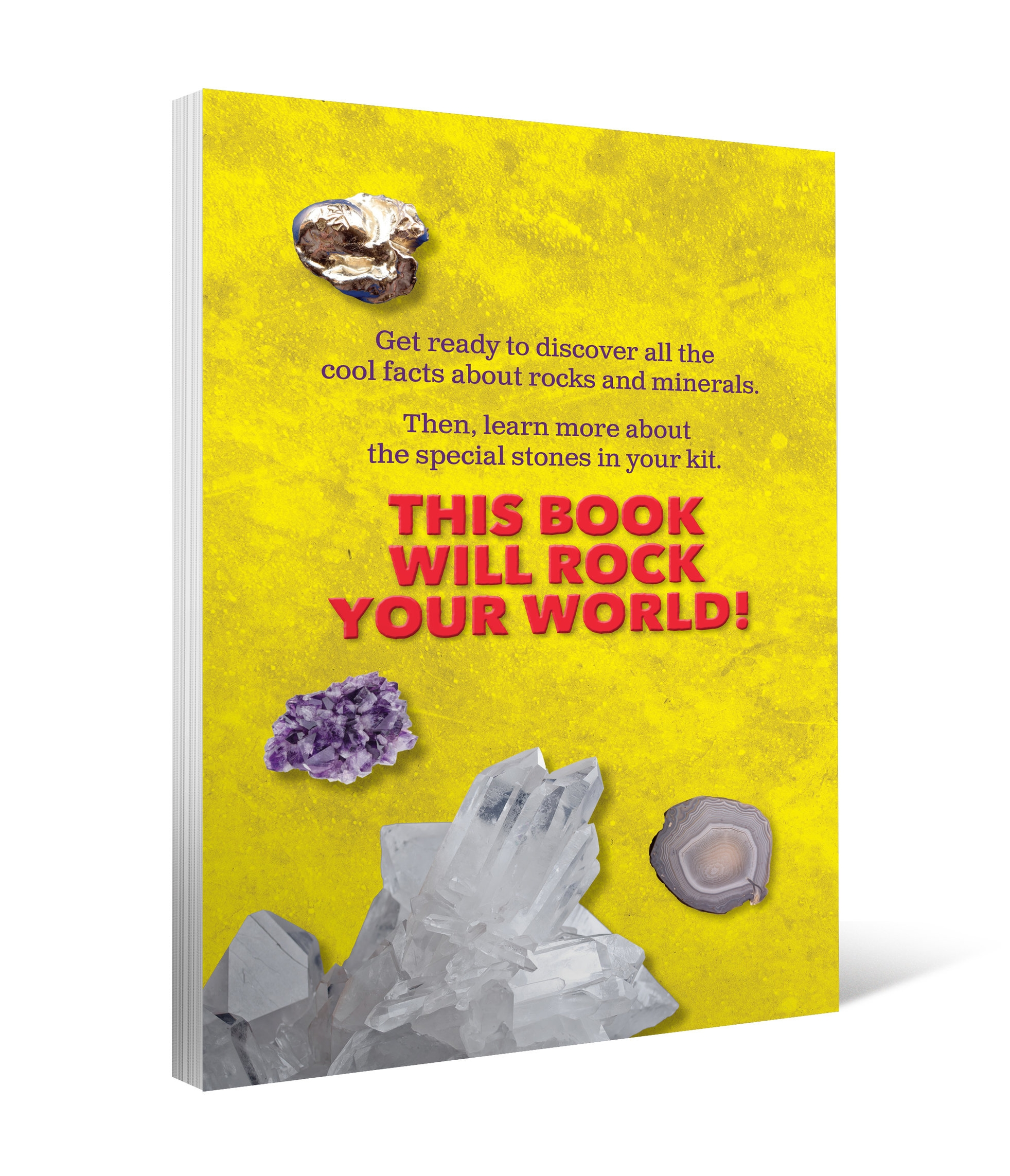 Amazing Rocks book 3d back.jpg
