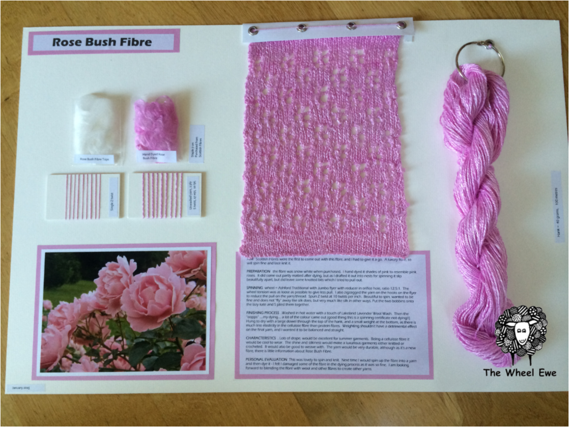 100% Rose Bush Fibre, LOVE it. silk like, with lots of lustre and drape. My favourite would be to blend this 50/50 with Bluefaced Leicester wool.