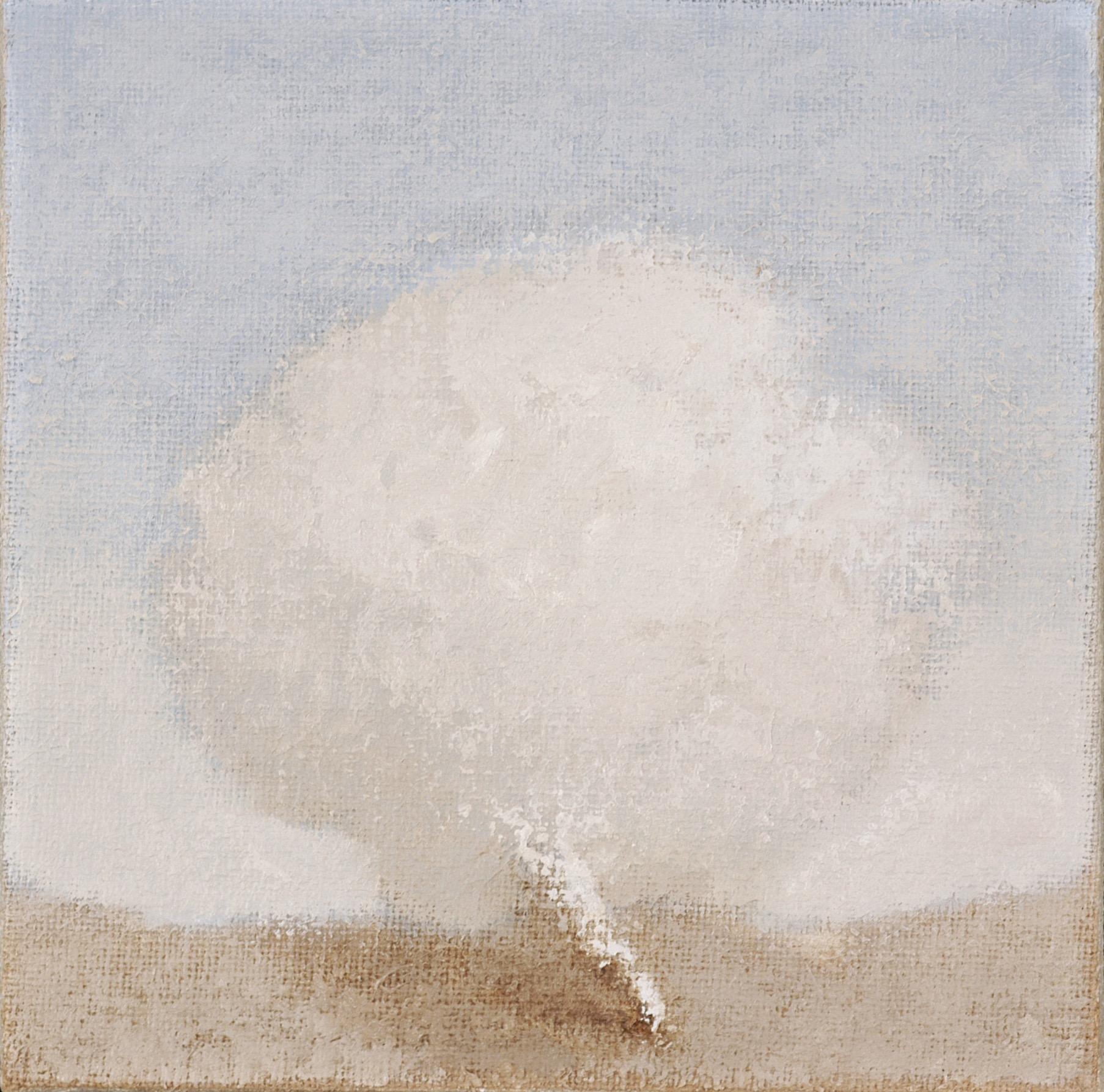 Bisogna comportarsi con discrezione nel giudicare le disposizioni del cielo, 2005