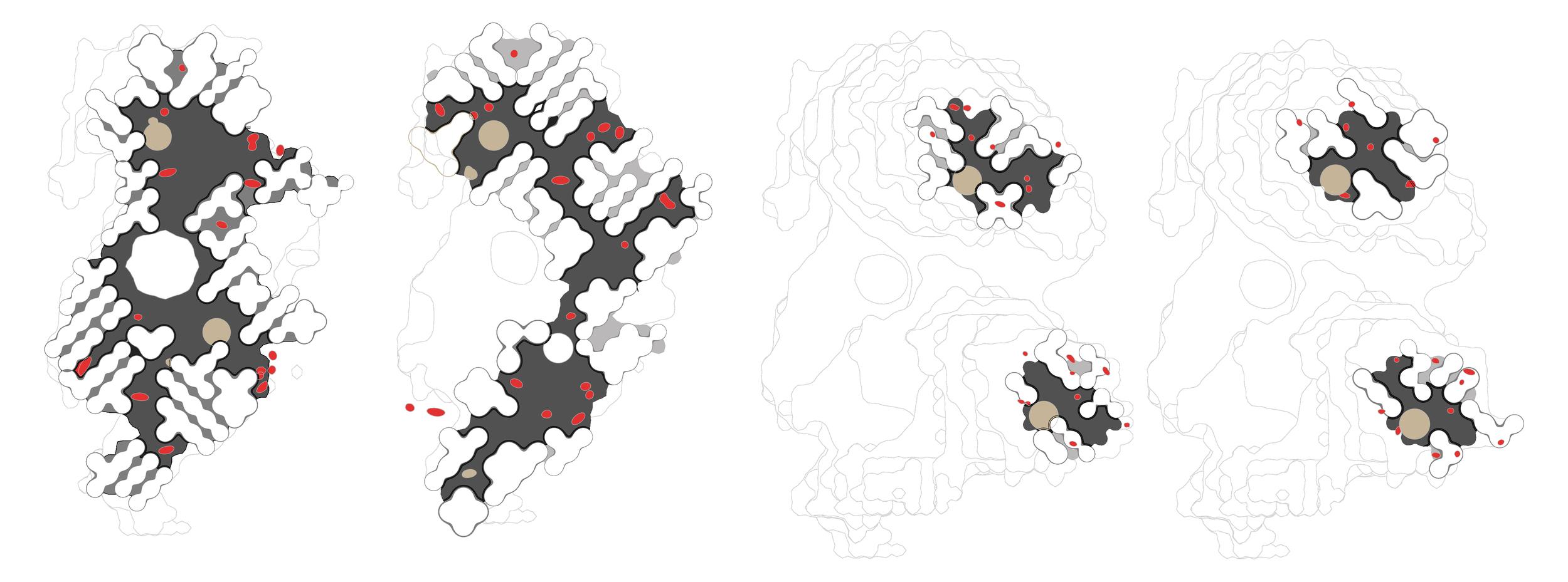Evolution of plans