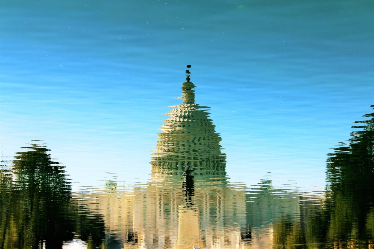 architecture-building-capitol-616852 (1).jpg