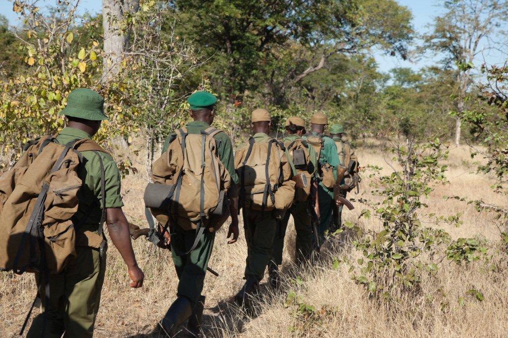 Scouts Patrol 12.jpg
