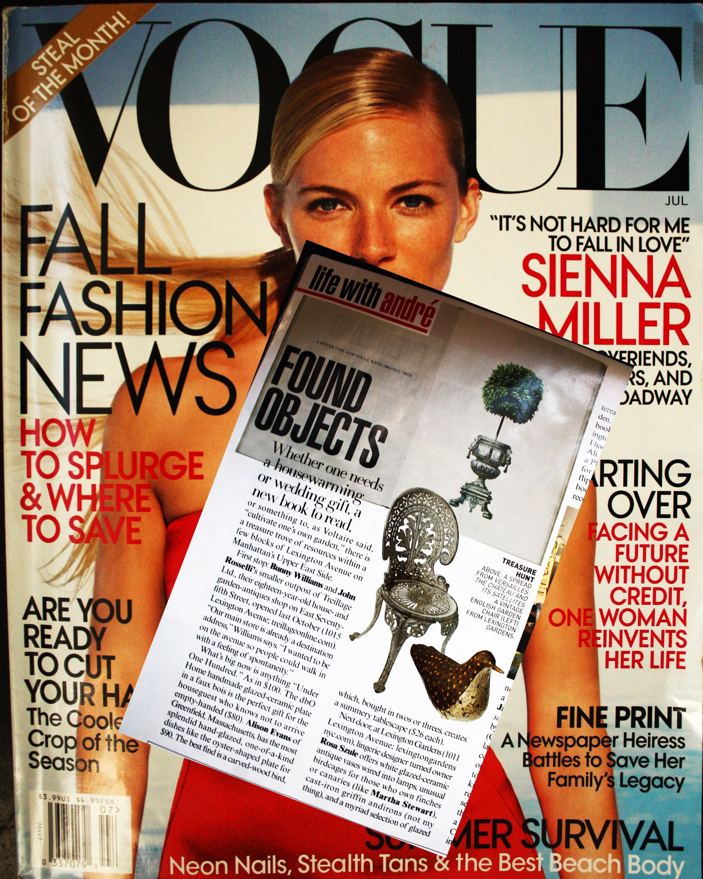 <b>Vogue</b><br/>Found Objects