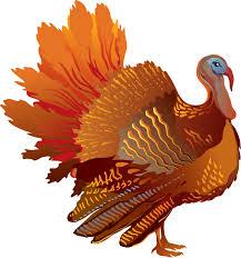 Turkey Image.jpg