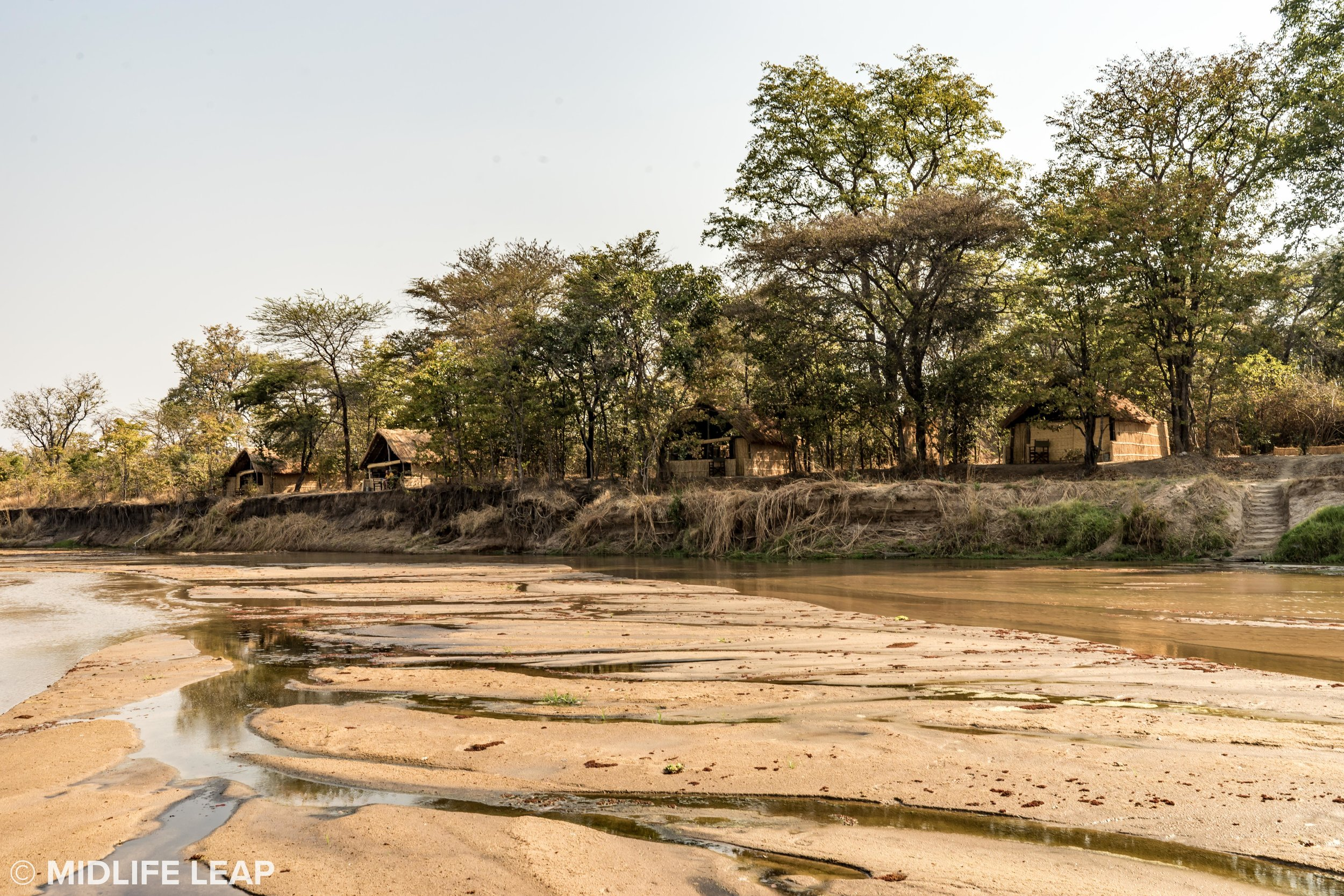 Mwaleshi blending into it's surroundings