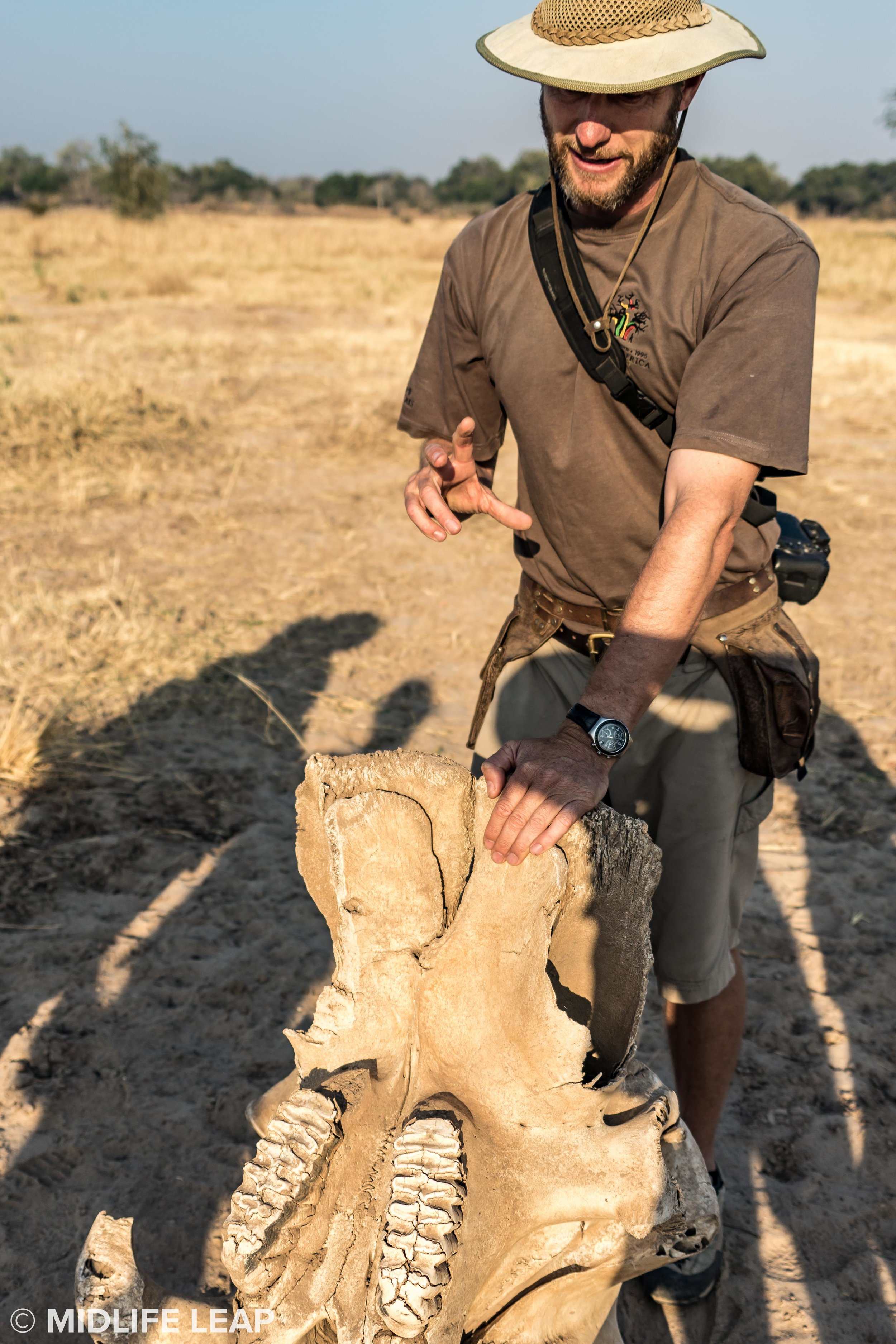 Brent teaching us about elephant dental hygiene